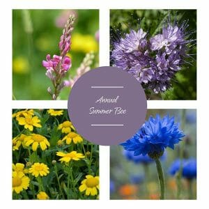 Annual summer bee flower mix