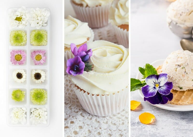 flowers in ice cubes, sugared decorations and ice-cream