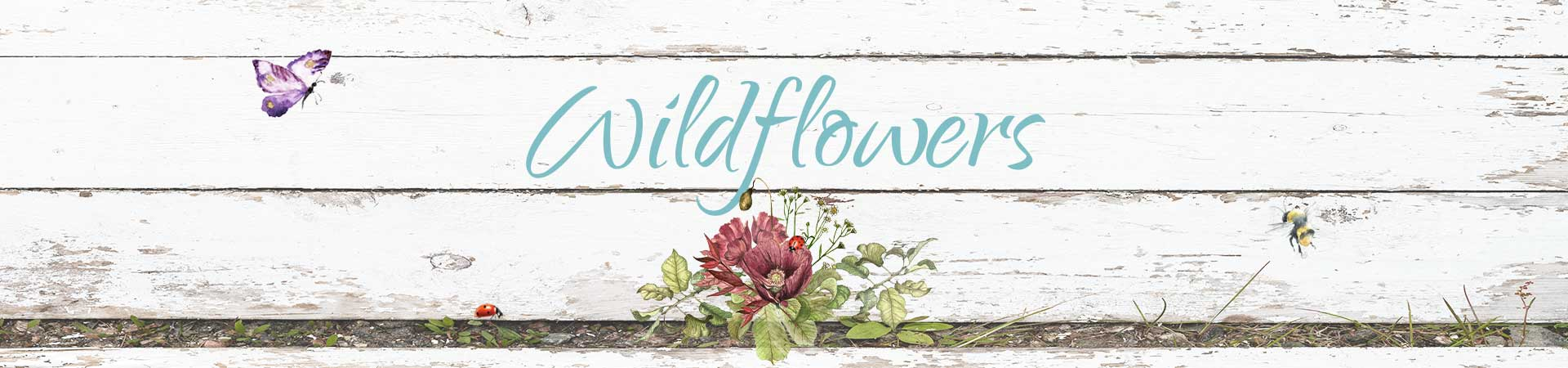 Wildflowers header image