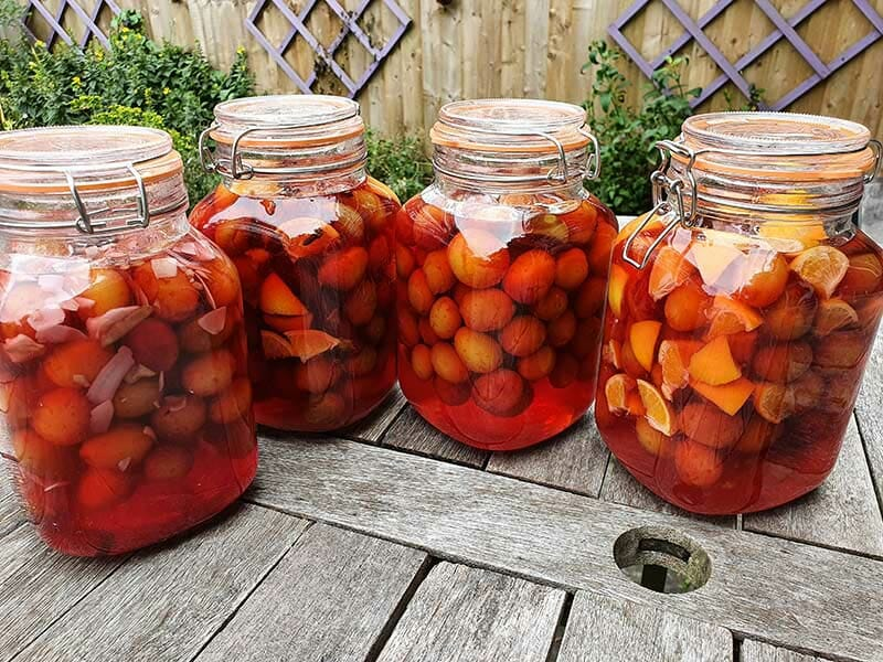 4 kilner jars of plum gin with variations