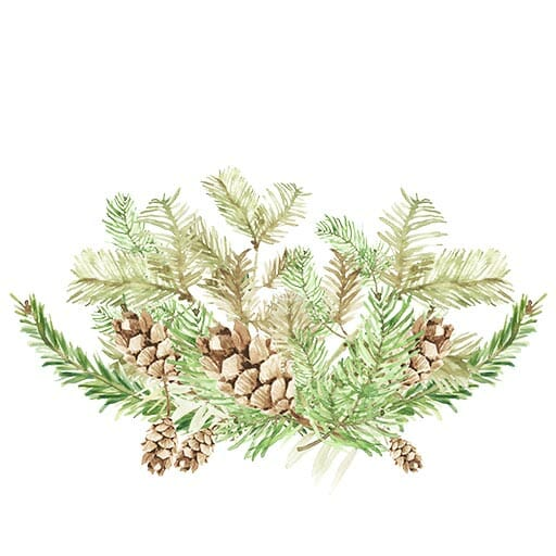 Winter gardening - fir cones and pine leaves